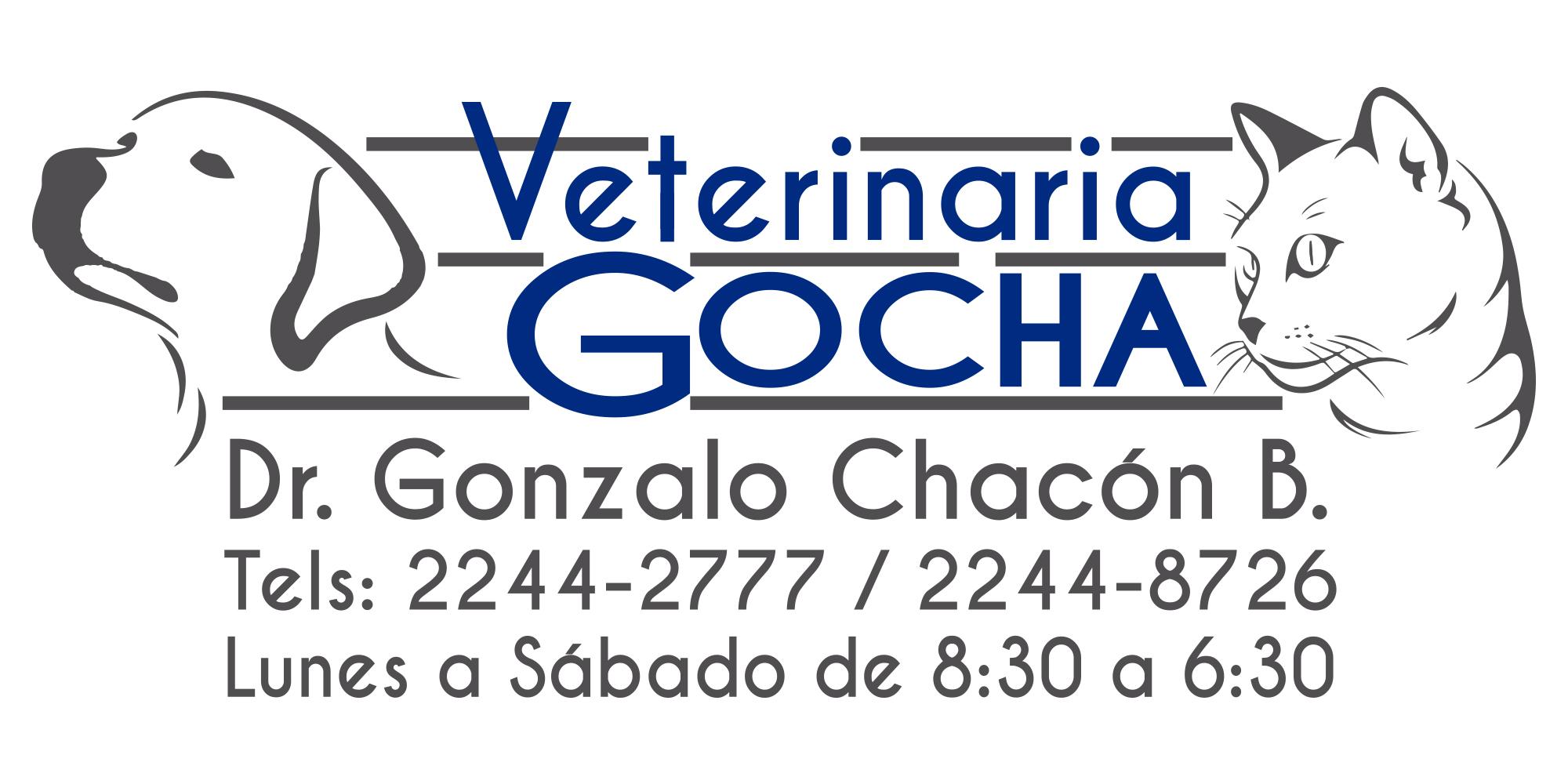 VeterinariaGOCHA